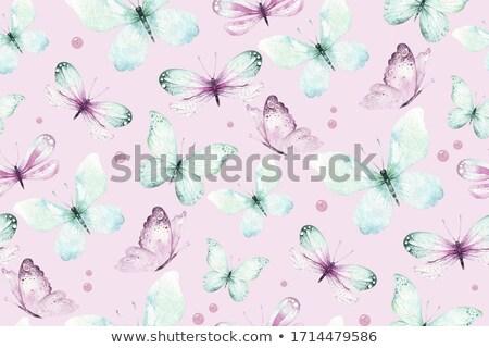 Foto stock: Acuarela · azul · mariposas · vector · formato