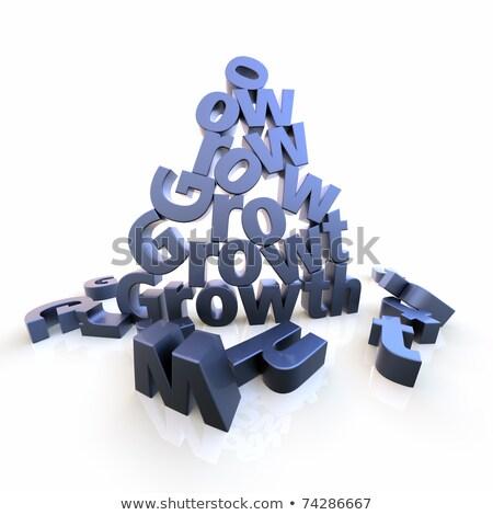 Wzrostu piramidy litery słowo list piętrze Zdjęcia stock © bestmoose