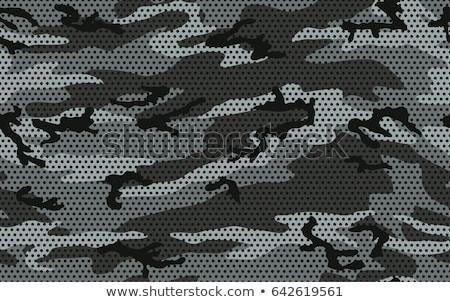 city camouflage texture Stock photo © romvo