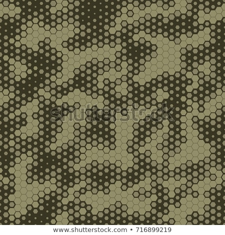 Military Camouflage Seamless pattern, Hexagonal grid background. Snake skin style Green camo Stock photo © Andrei_