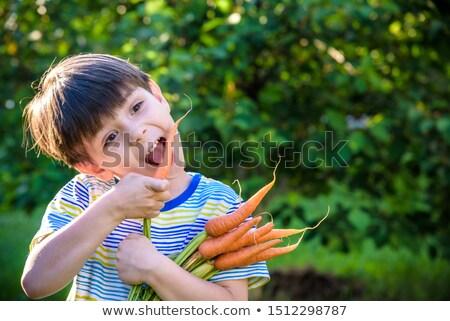 Persoon bos wortelen vrouwelijke wortel Stockfoto © IS2