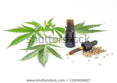 Medische hennep olie bloem gezondheid groene Stockfoto © joannawnuk