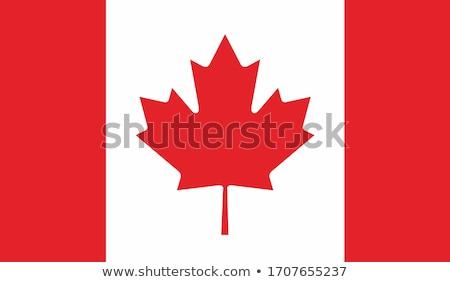 Kanada bayrak beyaz boya arka plan kırmızı Stok fotoğraf © butenkow