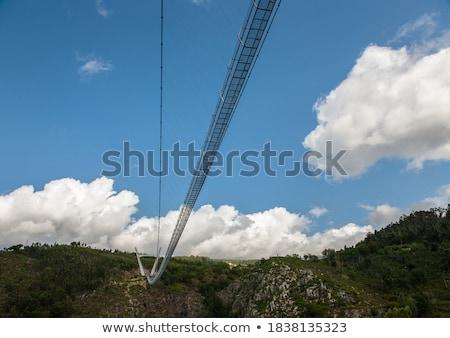 Voetganger brug torino Italië Blauw Stockfoto © claudiodivizia