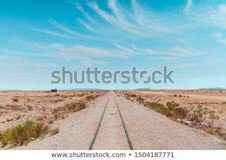 Trem deserto ilustração natureza lua fundo Foto stock © bluering