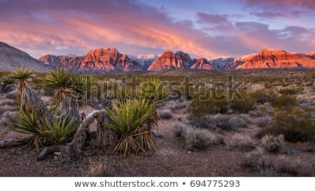 Red Rock Canyon Las Vegas Stock photo © vichie81