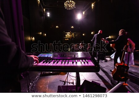 Singer and guitar player on stage during band gig Stock photo © Kzenon
