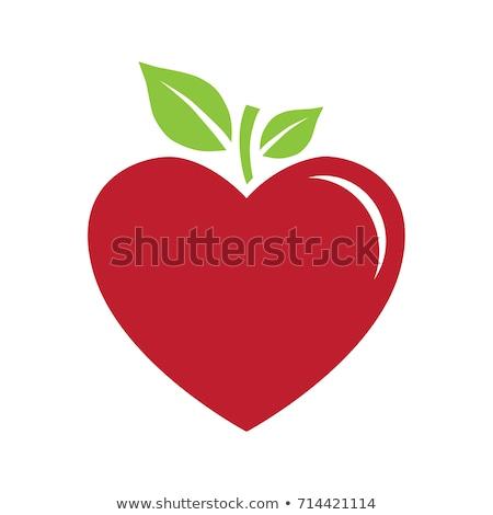 heart shape apple logo icon symbol element Stock photo © blaskorizov