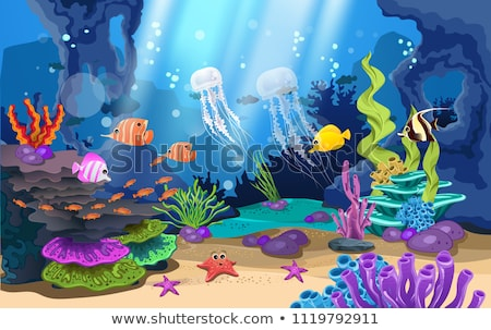 Frumos sub apă lume peisaj marin peşte mare Imagine de stoc © MarySan