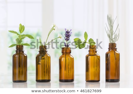a bottle of thyme essential oil with fresh thyme leaves stock photo © madeleine_steinbach