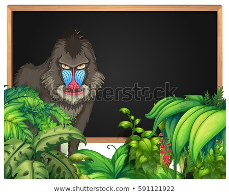 Frame template with baboon in forest background Stock photo © colematt