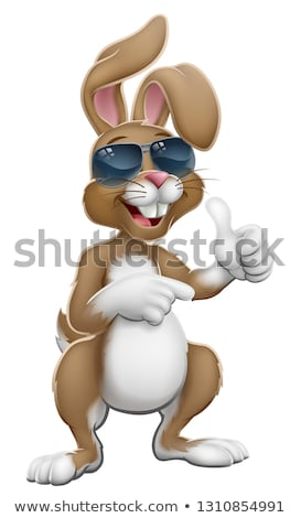 królik · Easter · bunny · wskazując · cartoon · około · podpisania - zdjęcia stock © krisdog