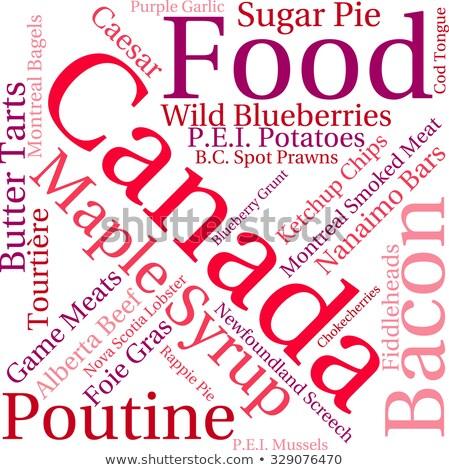 Comida Canadá ilustração Montreal estilo prato Foto stock © lenm