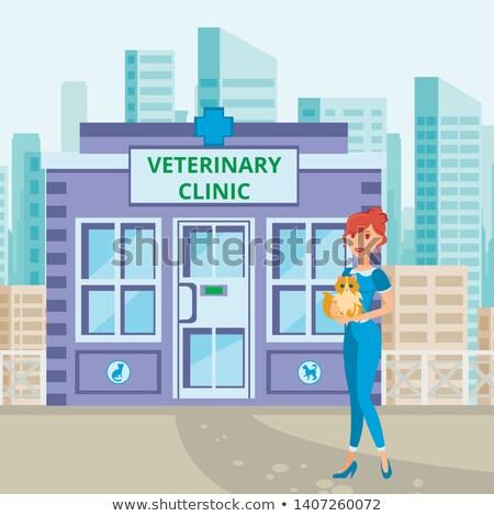 állatorvosi · szalag · terv · vonal · háló · orvos - stock fotó © colematt