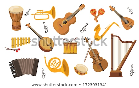 Musical instruments set Stock photo © netkov1