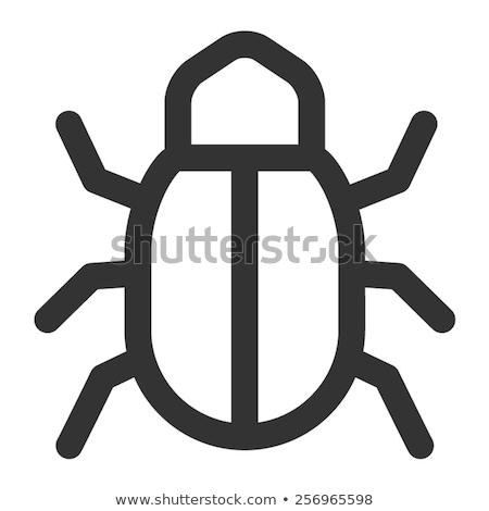 böcek · hat · ikon · vektör · yalıtılmış - stok fotoğraf © pikepicture