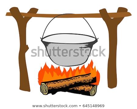 tradicional · ardente · camping · fogo · cor · vetor - foto stock © pikepicture