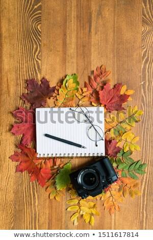Felső kilátás füzet toll szemüveg levelek Stock fotó © pressmaster
