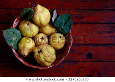 айва · фрукты · филиала · зеленый · студию · фотографии - Сток-фото © agfoto