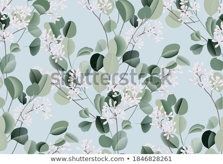 Padrão sempre-viva plantas algodão flores vintage Foto stock © Artspace