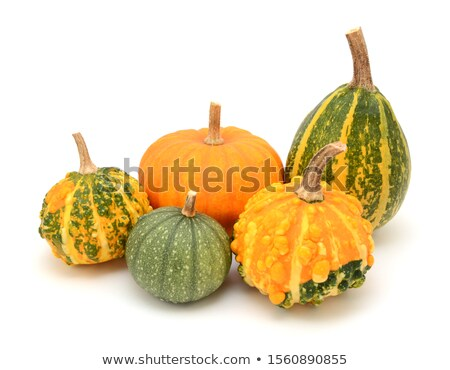 Group of decorative gourds with orange and green markings Stock photo © sarahdoow