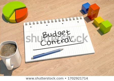 Bütçe kontrol metin defter kahve kupa çubuk grafik Stok fotoğraf © Mazirama