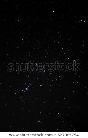 Krijger lang zwaard zwarte portret knap Stockfoto © Jasminko