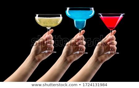 El martini cam görüntü kırmızı gül Stok fotoğraf © pongam
