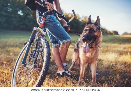 man with his dog at the bike stock photo © ivonnewierink
