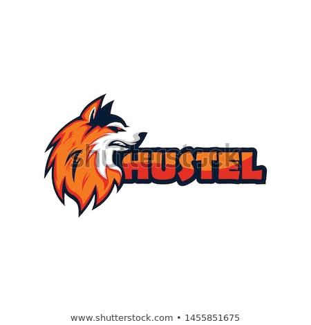 Сток-фото: Husky Mascot Vector Graphic