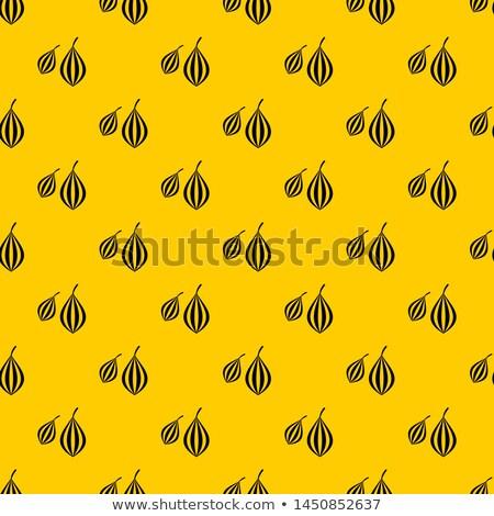 Geometrikus minta hozzávalók mértani virágminta csillag ánizs Stock fotó © TheFull360