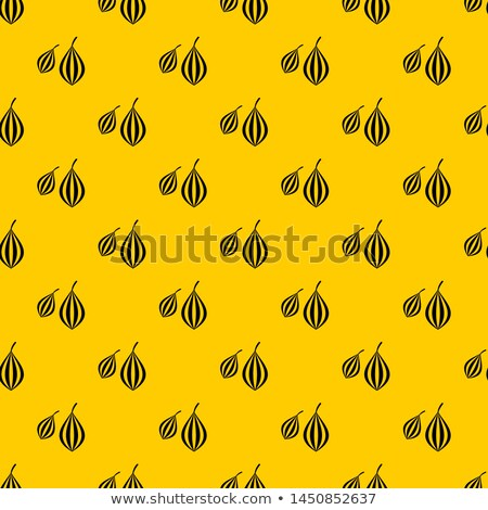 Geometrisch patroon ingrediënten meetkundig bloempatroon star anijs Stockfoto © TheFull360