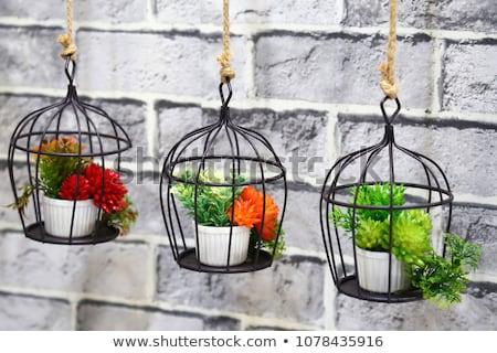 ornamented flowerpots with purple background stock photo © konradbak