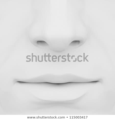 nose and lips 3d Stock photo © mastergarry