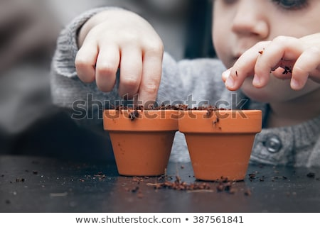 Kid planting seeds Stock photo © kariiika