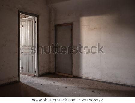 broken doors in abandoned interior Stock photo © sirylok