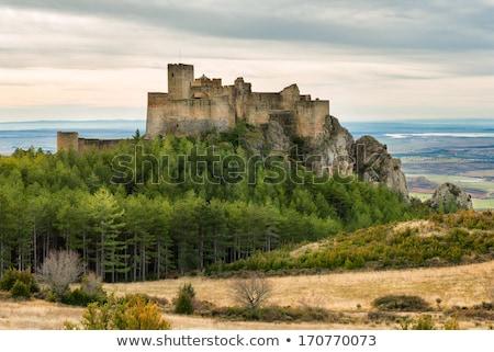 Château Espagne médiévale bâtiment texture nuages Photo stock © Fernando_Cortes