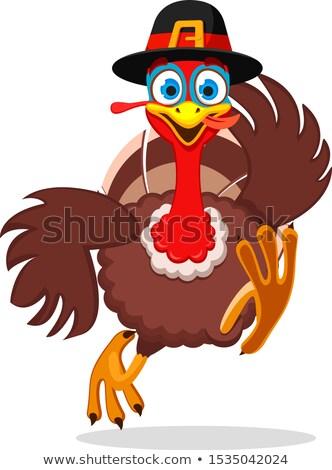 Action de grâces Turquie courir pauvres pèlerin plumes Photo stock © jorgenmac