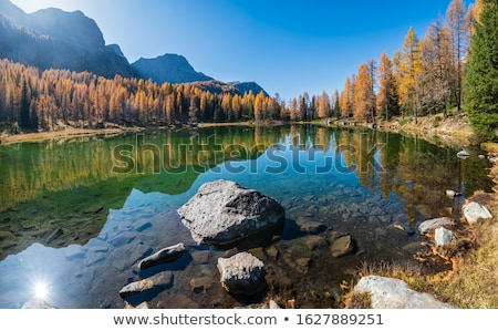 Italiano forestales naturaleza paisaje Foto stock © Antonio-S