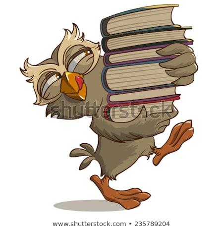 Zdjęcia stock: Satisfied Owl Carries Books