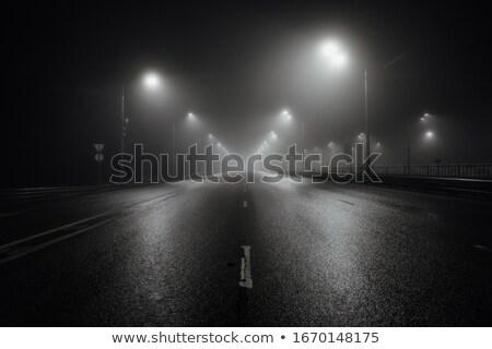 ночь дождливый улице реалистичный bokeh можете Сток-фото © tracer