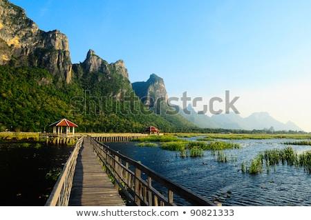 Jezioro roi parku Tajlandia niebo wody Zdjęcia stock © FrameAngel