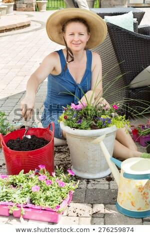 Attractive woman potting up nursery seedlings Stock photo © ozgur
