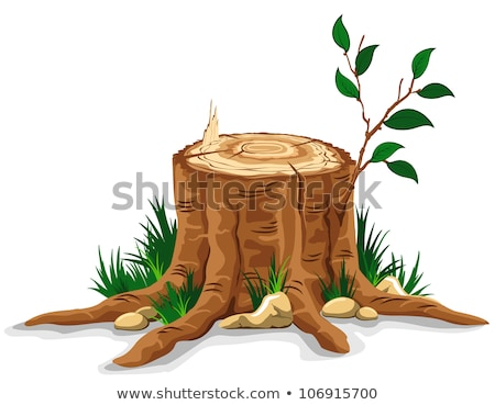 Autumn leaves on an old tree stump Stock photo © Valeriy