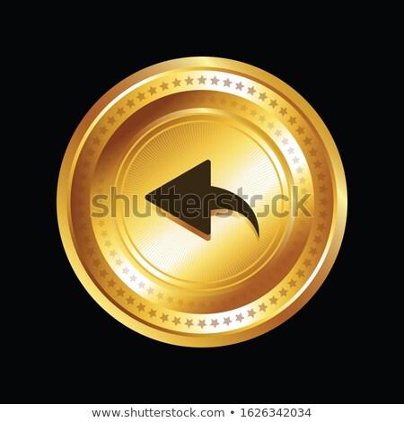 Vetor ouro ícone web botão tecnologia Foto stock © rizwanali3d