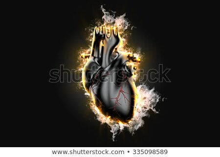 flaming human heart 3d illustration contains clipping path stock photo © kirill_m