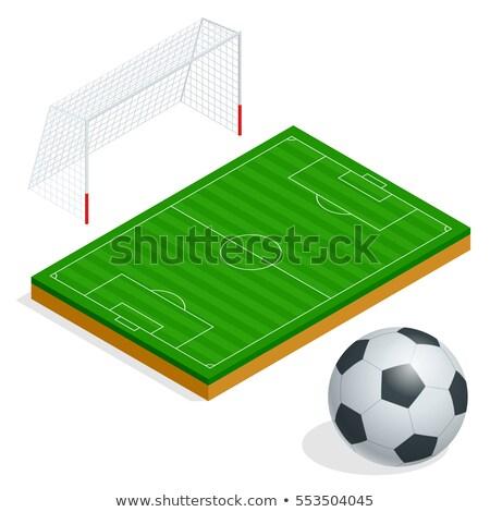 Design icône football porte ui couleurs Photo stock © angelp