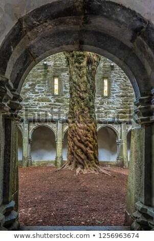 church in killarney county kerry Stock photo © morrbyte