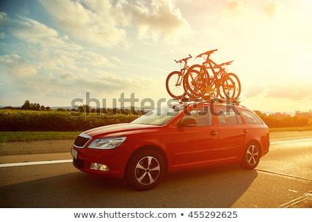 велосипедов · блокировка · цепь · изолированный · белый · ключевые - Сток-фото © nobilior