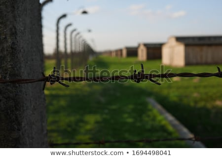 Concentration camp observation tour Photo stock © FER737NG